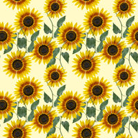 Seamless floral design with sunflowers for background
