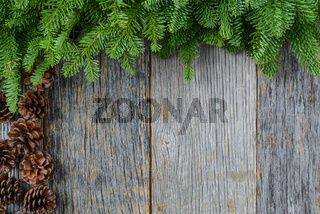 Tree branch on rustic wooden background  with pine cones