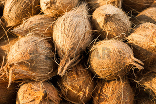 Fresh coconuts at market place
