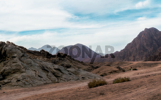 panoramic view of desert with rocky mountains in Egypt