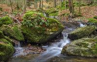 In the Kemnitz Valley (Burgsteingebiet-Vogtland)