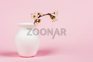 blooming twig in white jug on pink background close up with copy space