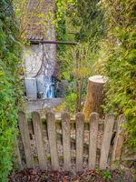 View over a wooden fance into a green, wild little garden.