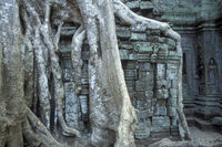 CAMBODIA SIEM REAP ANGKOR PREAH KHAN TEMPLE