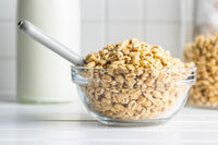 Puffed wheat covered with honey in glass bowl. Cereal breakfast.