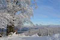 southern Black Forest in Winter