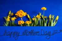 Yellow Spring Flowers, Tulip, Narcissus, Text Happy Mothers Day