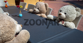 Meeting with Teddy Bears