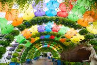 Multicolor umbrellas roof in Dubai miracle garden