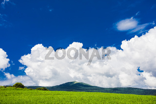 Scenic bright green field with mountain peak on background
