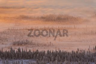 Nebelstimmung, Stubba Naturreservat, Welterbe Laponia, Lappland