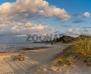 Beach hike to the Torre Guaceto in Apulia, Italy through the maritime nature reserve