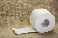 Roll of white toilet paper