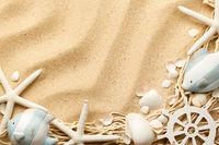 Marine Life Concept On Sand Background