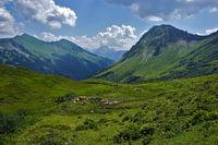 Bregenzer Forest, Austria, alpine landscape with cows