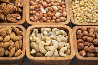 cashew and other nuts abstract