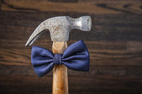 Dressed up hammer