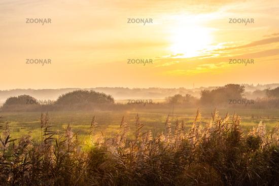 Morning sun and beautiful light on the landscape of Borkum