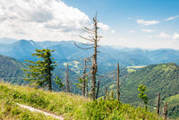 Hike to the Almkogel, a mountain in the Enns Valley in Großraming, Upper Austria