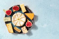 Cheese selection with copy space. A banner with an assortment of cheeses with a place for text