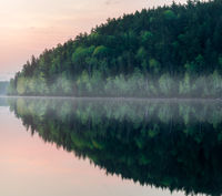 Reflections of the pines in the boundary waters of Minnesota