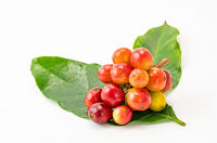 DSC07729 Colorful coffee fruits and green leaves isolated on white background with clipping path.jpg