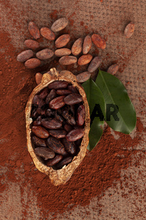 Fresh roasted cocoa beans on brown background.