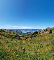 Banks Peninsula, Christchurch District, Canterbury, South Island, New Zealand.