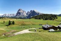 Seiser Alm (Alpe di Siusi). Valgardena Italy