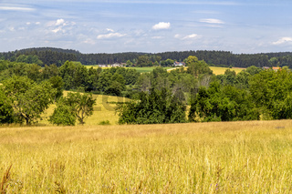 Bavarian Forest scenery