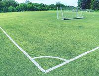 White line corner of the soccer field, pattern of green grass for football sport,
