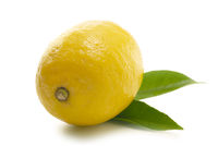 Lemon isolated against white
