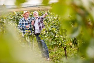 Zwei Winzer im Weinberg trinken ein Glas Rotwein