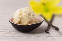Eiskugel Vanilleeis mit Vanilleschoten und Vanilleblüte