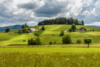 Farmhouses in hilly landscape in the Black Forest, Baden-Wuerttemberg, Germany
