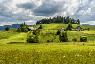Bauernhäuser in hügeliger Landschaft im Schwarzwald, Baden-Württemberg, Deutschland