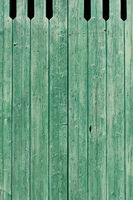 Old green painted weathered wooden planks