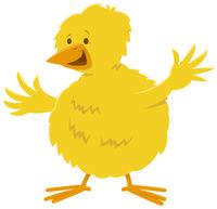 little yellow chick farm animal comic character