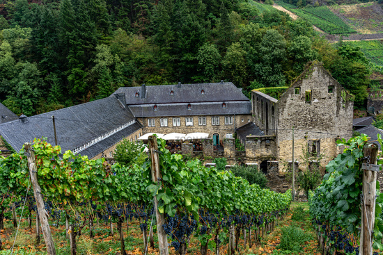 An old monastry in the vineyard