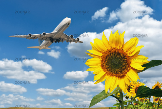 Air transport and environmental protection