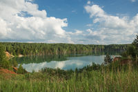 forest lake landscape. View of the blue lake forest