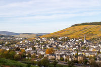 Autumn landscape with multi colored nature at Bernkastel-Kues on river Moselle