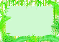 Exotic plants, tropical, jungle banner, background illustration