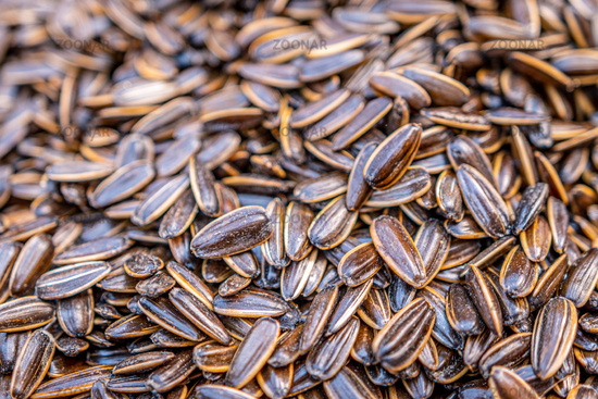 Organic, sweet and nutty sunflower seeds in shell
