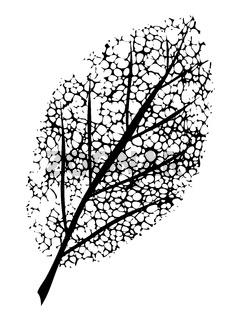 dead leaf symbol of grief