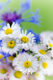 Bouquet of daisies and cornflowers close-up