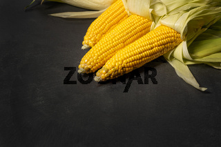 Ripe young sweet corn cob with leaves