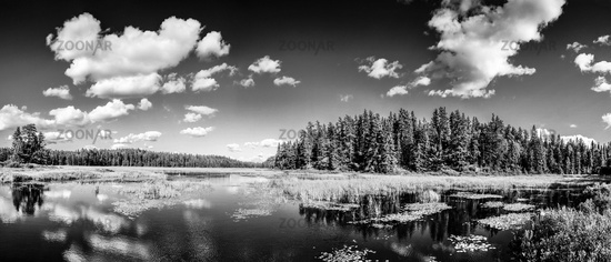Monochrome mirror lake reflections of clouds and Forest landscape. Ontario, Canada.