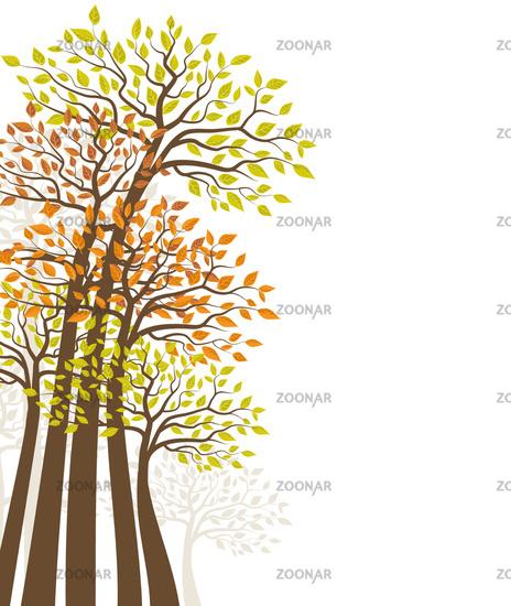 Trees with colored leaves. Natural background