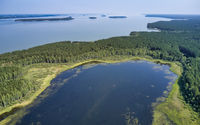 Aerial photo of forest boggy lake in the Karakansky pine forest near the shore of the Ob reservoir.